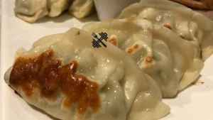 Vegetable Tofu Dumpling Recipe