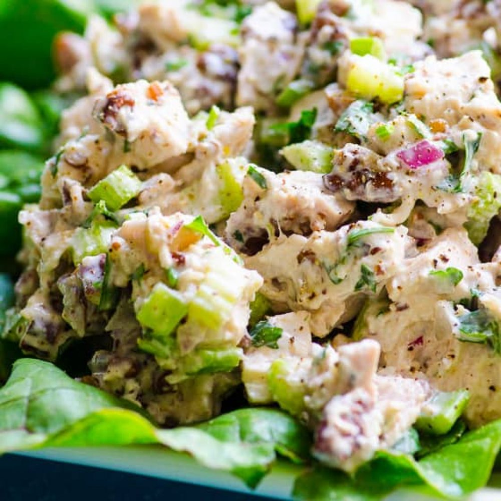 Chicken Salad Indian Recipe For Weight Loss Fitelo